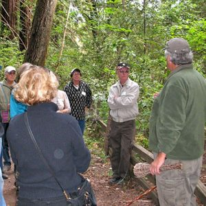 Docent-Guided Tour Schedule