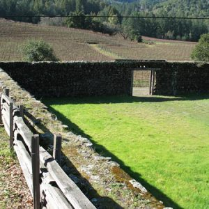 The Winery Ruins